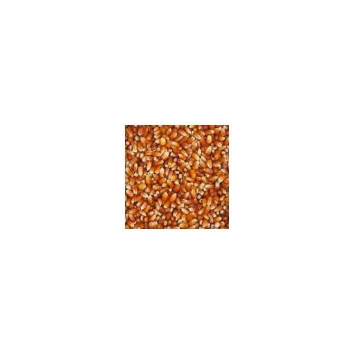 Nº76_Maiz-Rojo-Francés-150x150.jpg [1]