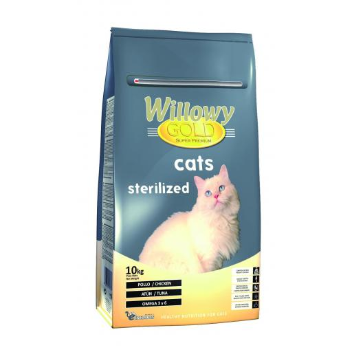 Willowy Gold CATS STERILIZED.