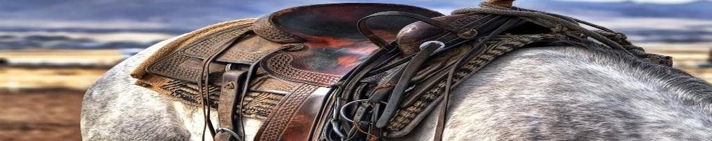 Piensos para caballos en Cantabria