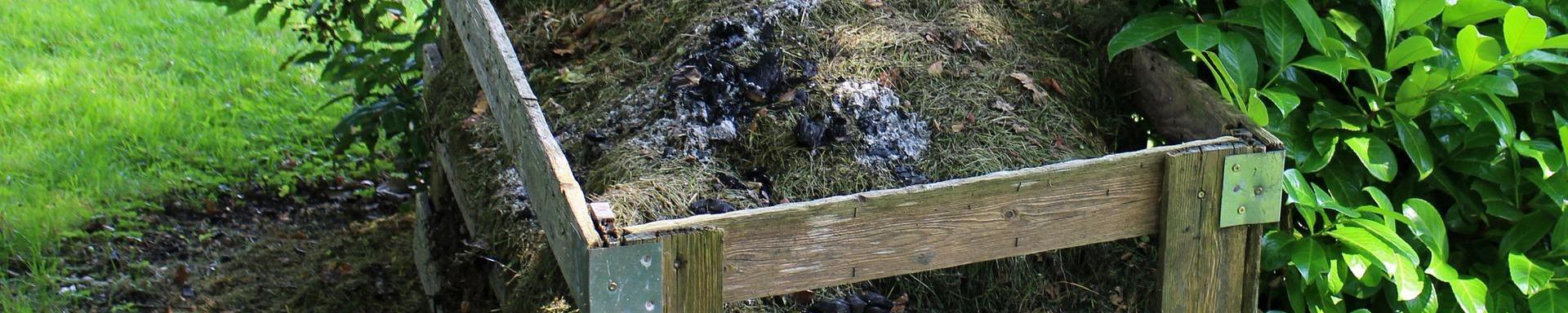 Exigencias de nutrientes en el mantenimiento de huerta en Cantabria