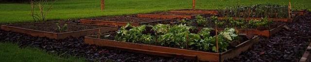 Crear un huerto en tu jardín o terraza en Cantabria