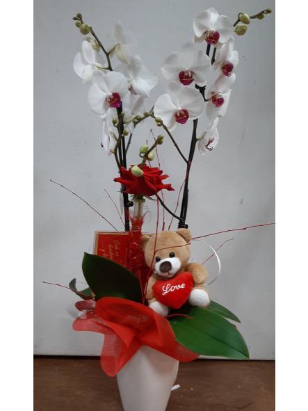 Orquídea de San Valentín, bombones, peluche y rosa roja decorada [0]