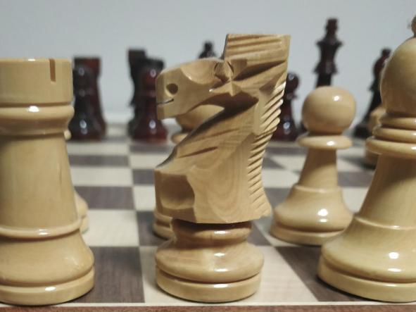 Conjunto Reydama Tablero de ajedrez de 50x50 Piezas Staurton 6 Plomadas set Damas adicionales Stauton 6 plomadas