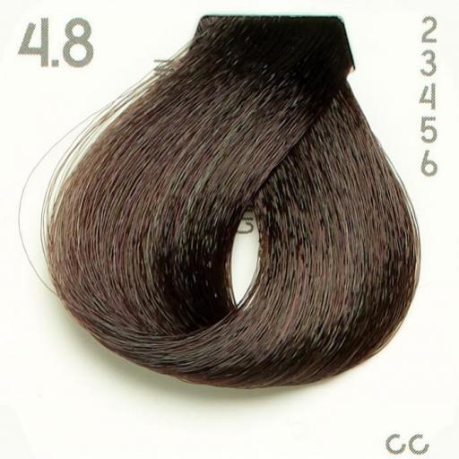 Tinte Nº 4.8 Hairconcept Evolution Orgánic 60 ml. [1]