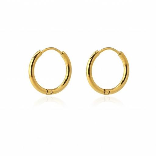 Aros acero Anartxy 14mm de sección circular dorados [0]
