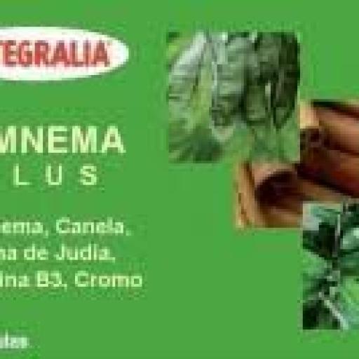Gimnema Plus