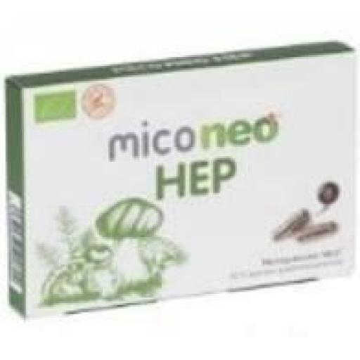MICONEO HEP