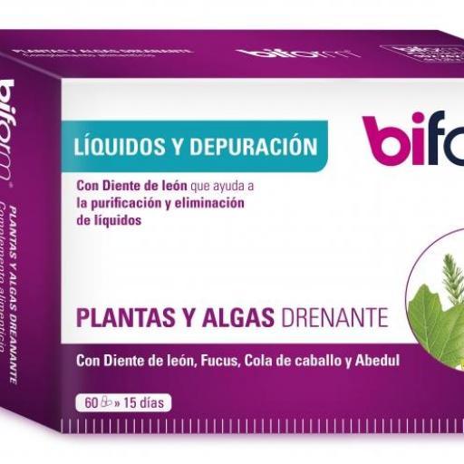 Plantas y Algas