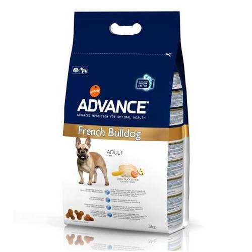 Advance Bulldog Frances Adult