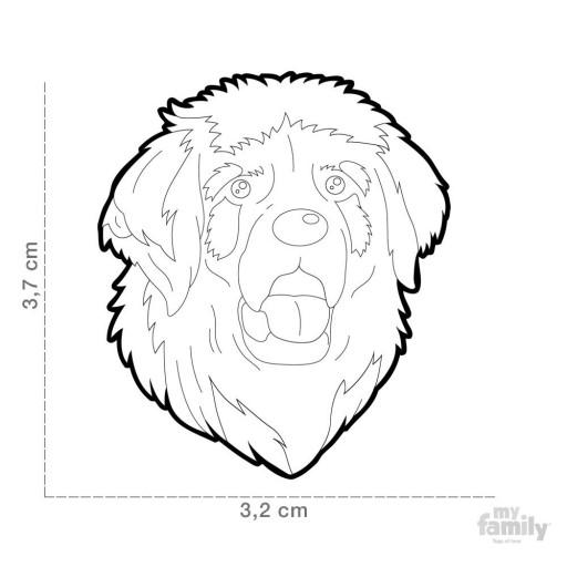 Placa Leonberger [1]