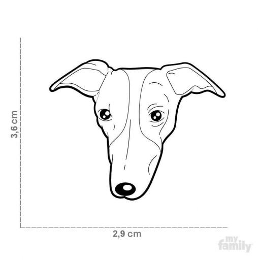 Placa Nuevo Greyhound [1]
