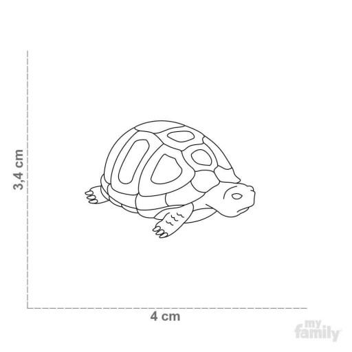 Placa Wild Tortuga [1]