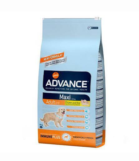 Advance Maxi Adult para Perro