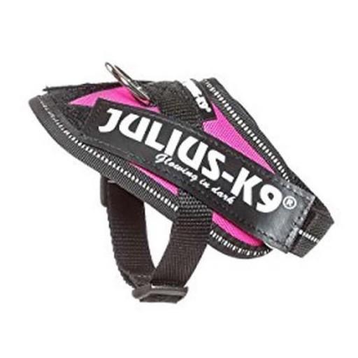 Julius K9  IDC Baby 1 Fucsia