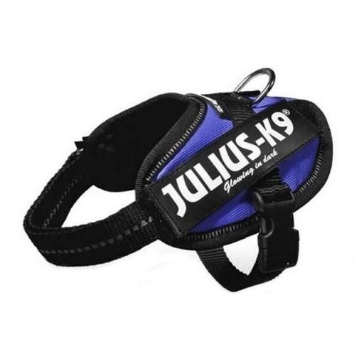 Julius K9  IDC Baby 1 Azul