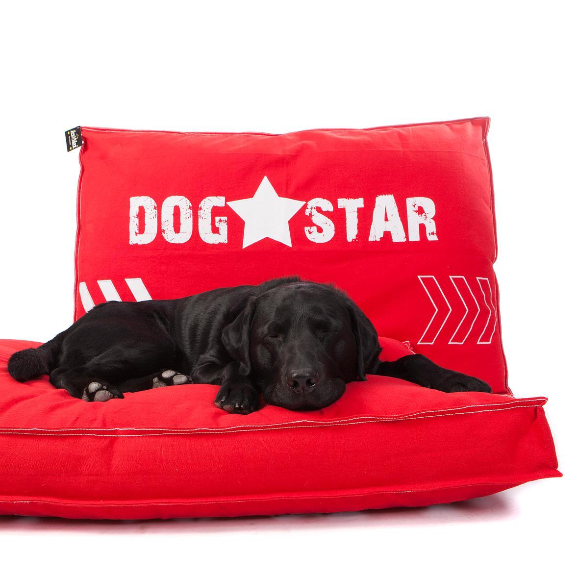 Boxbed Dog Star (en 2 colores)