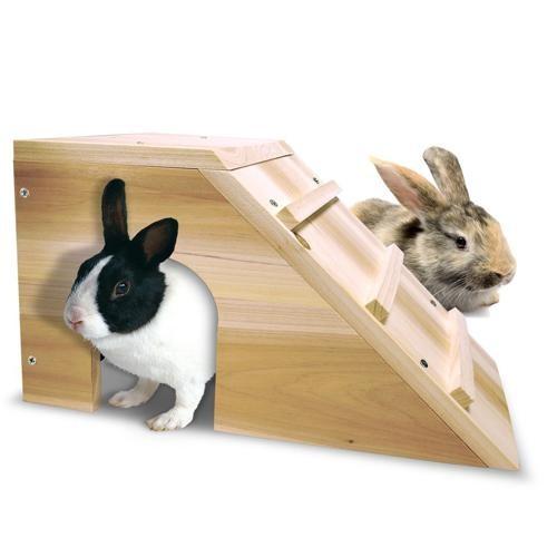 Casa de Madera para Conejo Enano