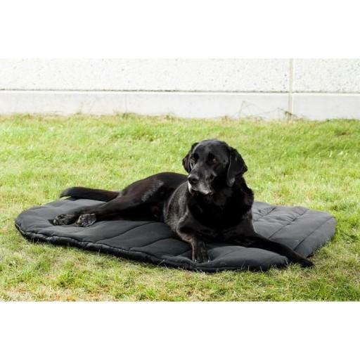 Colchón térmico para perro [1]