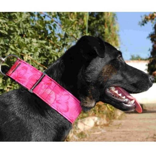 Collar Martingale Modelo Rosas [2]
