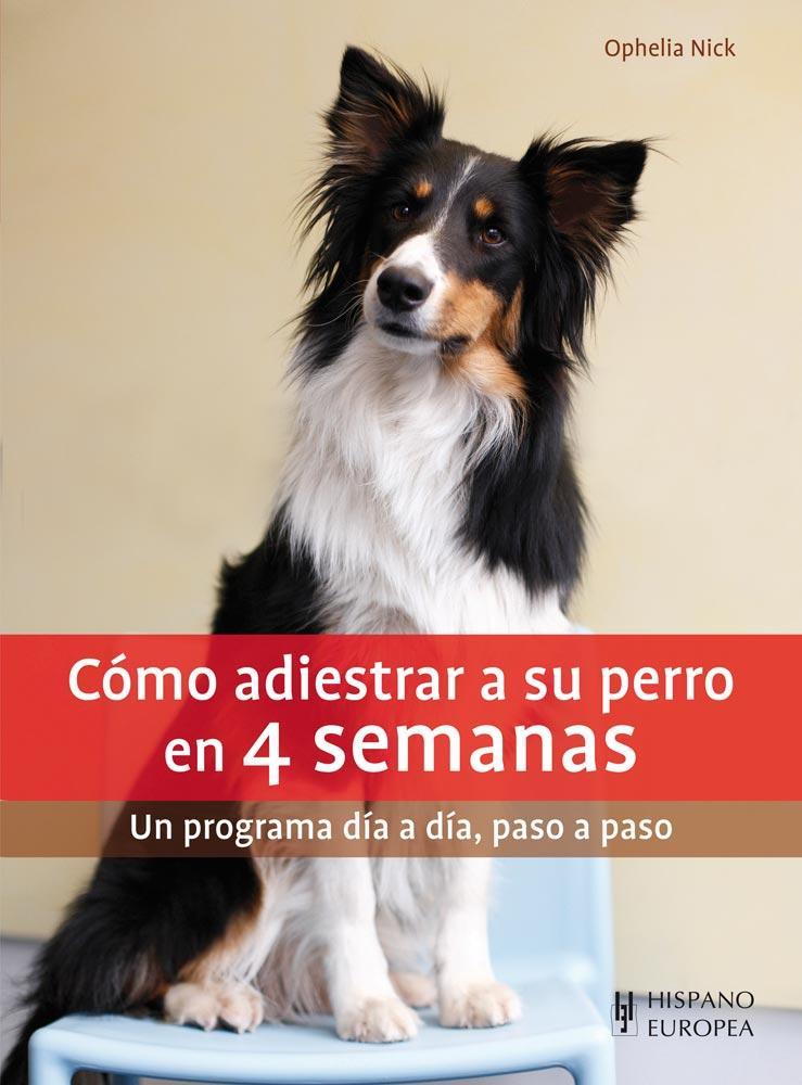 Como Adiestrar a su Perro en 4 Semanas