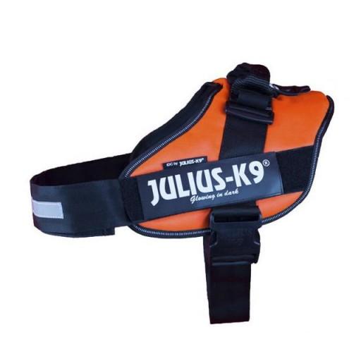 Julius K9 IDC 0 Naranja