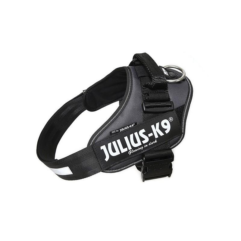 Julius K9 IDC 0 Gris