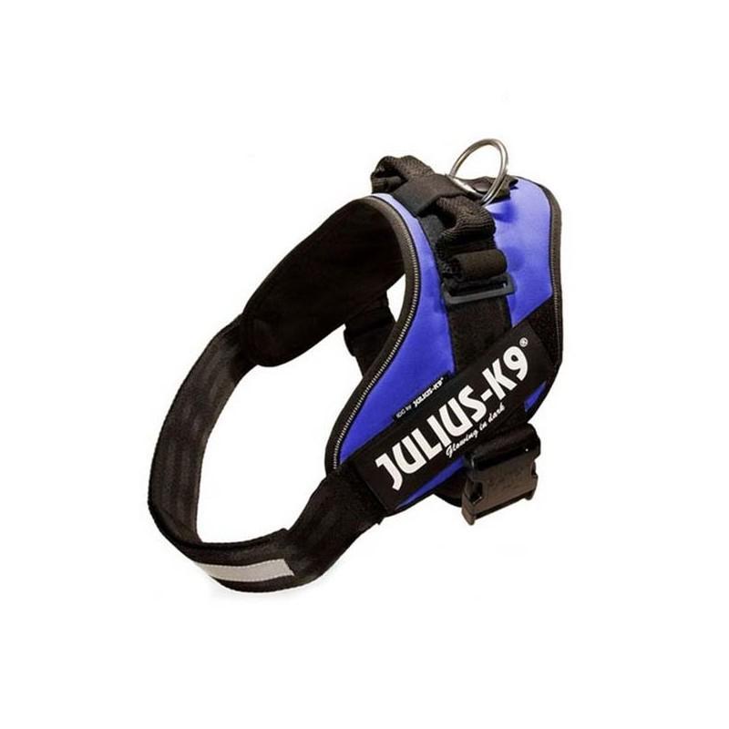 Julius K9 IDC 0 Azul