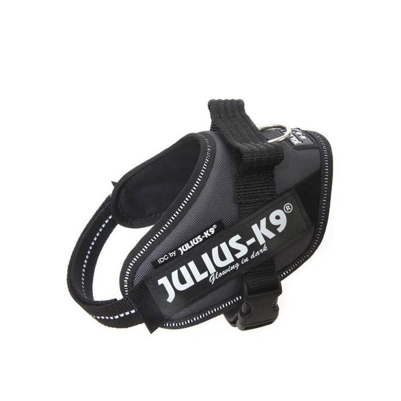 Julius K9 IDC Mini Gris
