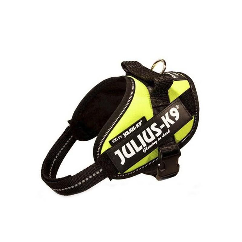 Julius K9 IDC Mini Amarillo