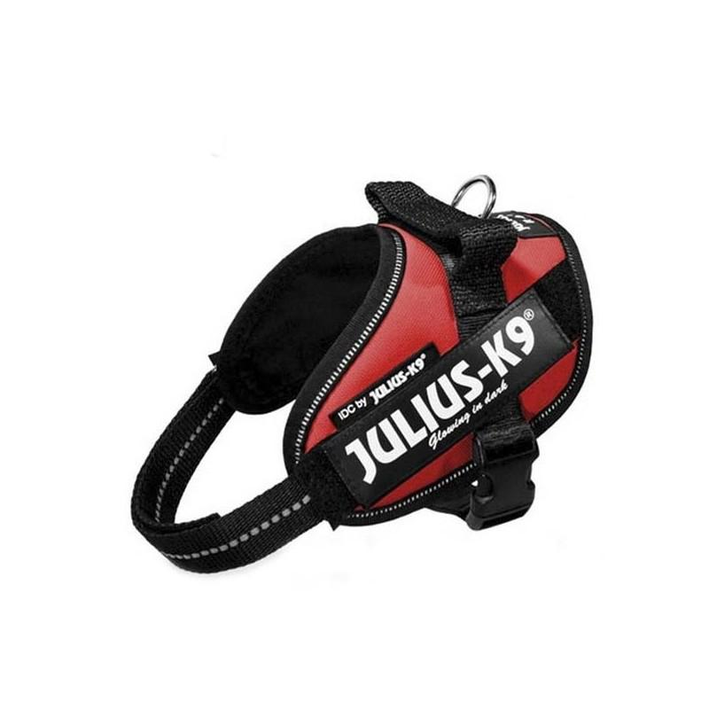 Julius K9 IDC Mini Mini Rojo