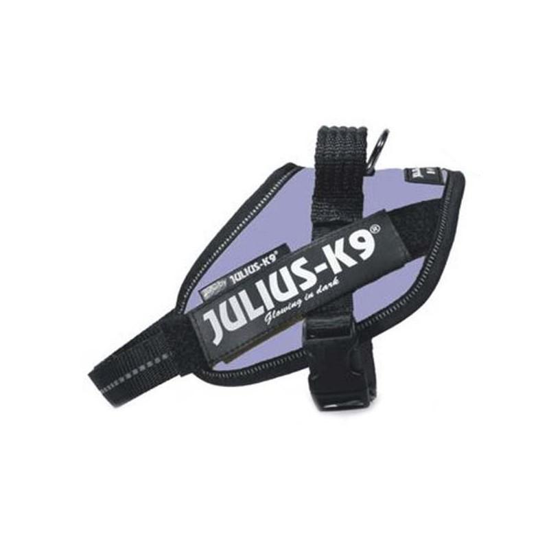 Julius K9 IDC Mini Mini Lila