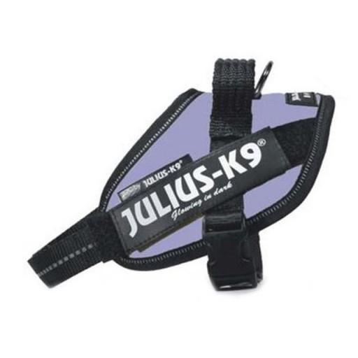 Julius K9 IDC Mini Mini Lila [0]