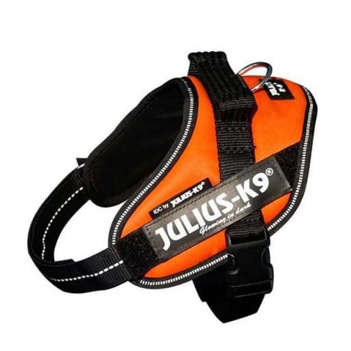Julius K9 IDC Mini Naranja