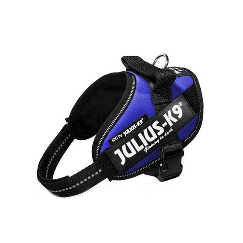 Julius K9 IDC Mini Azul