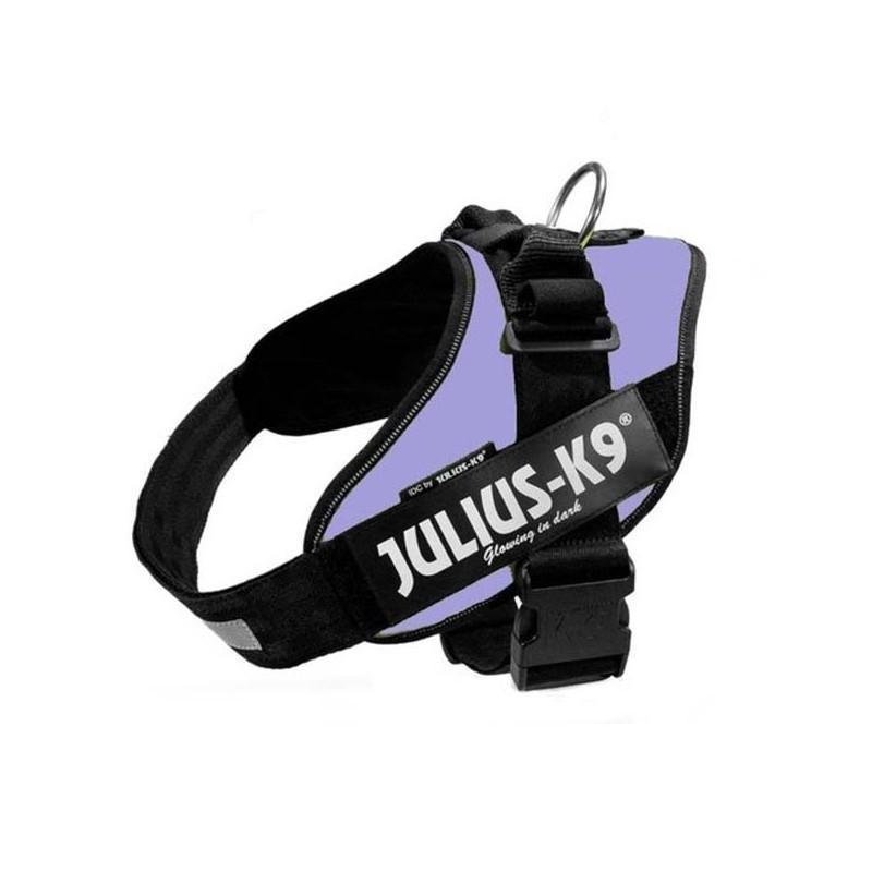 Julius K9 IDC 3 Púrpura