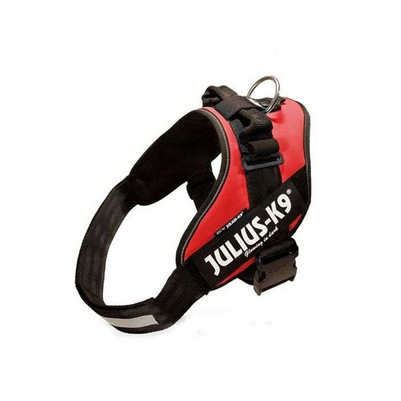 Julius K9 IDC 2 Rojo