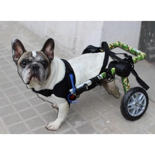 Silla de Ruedas para Perro Ajustable [3]