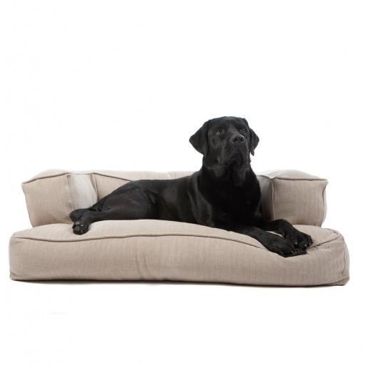 Dog Sofá Boutique Beige [1]