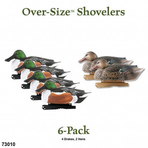 OVER-SIZE SHOVELERS  (PATO CUCHARA) [1]
