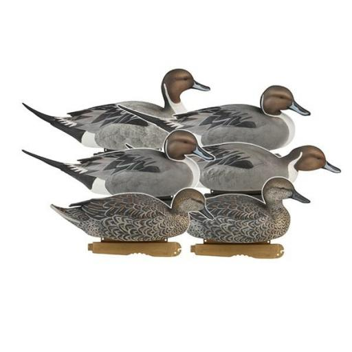 PG PINTAILS PACK (ÁNADE RABUDO)