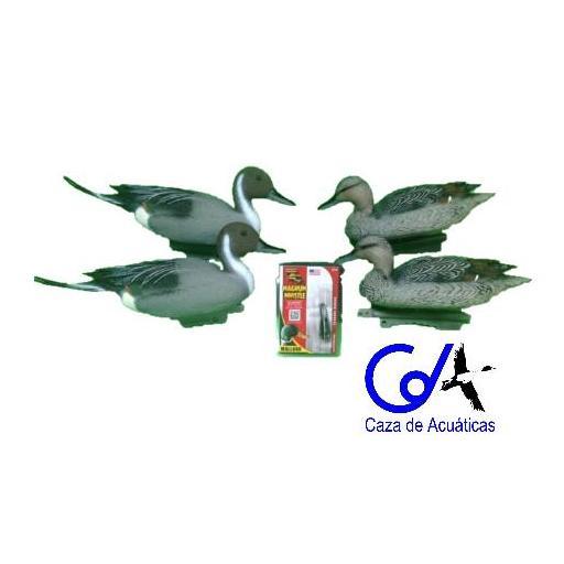 PACK RECLAMO MP 90 + 4 CIMBELES DE RABUDO (2 MACHOS Y 2 HEMBRAS)