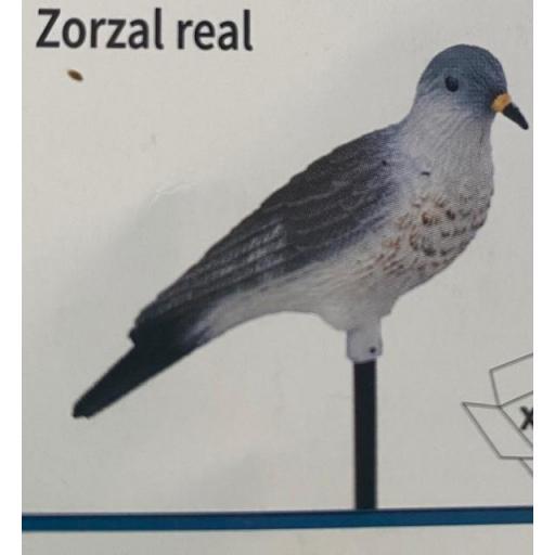 ZORZAL REAL