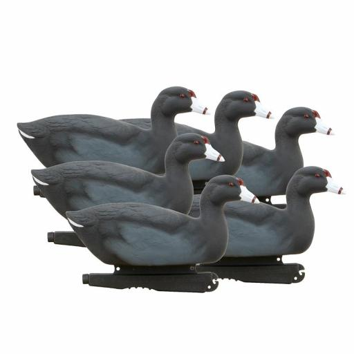 HUNTER SERIES OVER SIZE - COOTS [0]