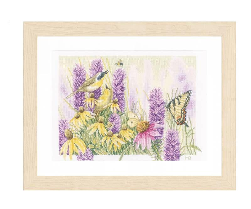 Kit Butterfly bush and echinacea