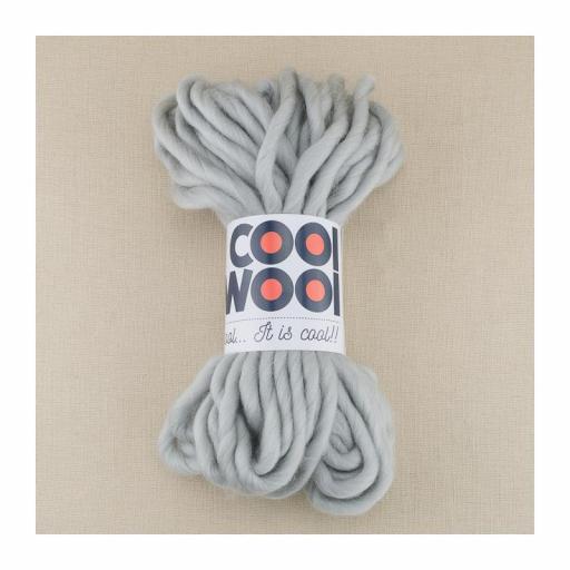 Cool Wool Gris claro 007
