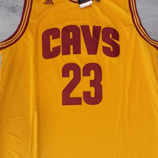 Cleveland Cavaliers #23 LeBron James Gold Stitched 2016 The Finals Alternate Swingman NBA Jersey [1]