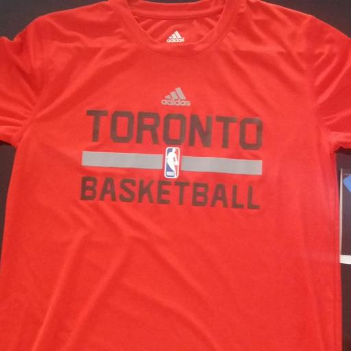 Jersey - Practise - Joven - No Name - Toronto Raptors - Alternate - Adidas