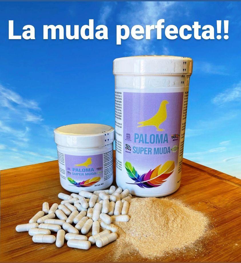 SUPER MUDA PALOMA