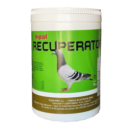Suplemeto De Proteinas BIPAL RECUPERATOR 700 Gr.