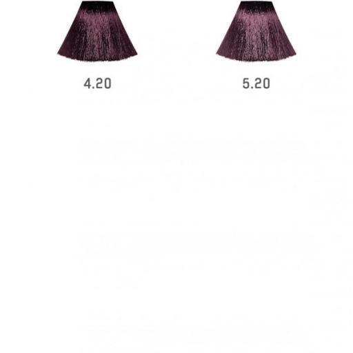 Tinte Divina.Pure Violetas [1]